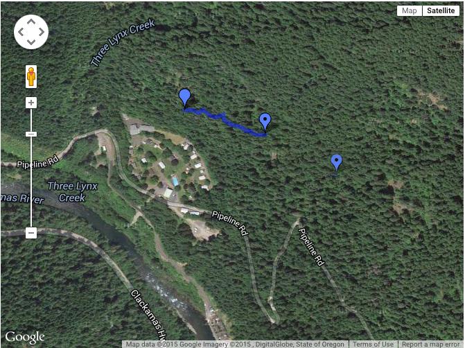 3lynx_trail.jpg