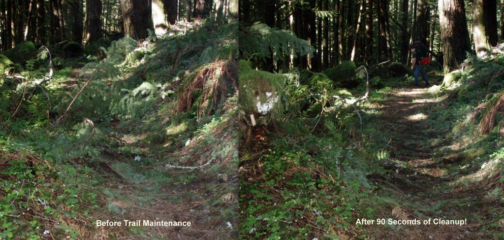 See how easy trail maintenance can be?